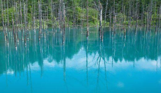 北海道の青い池が冬のライトアップ!?期間や点灯時間は??