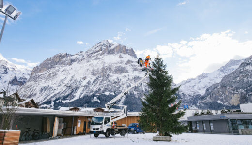 USJ 世界一のツリーってなに!?クリスマスに家族で行きたい
