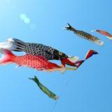 初節句の鯉のぼりはいつからいつまでが飾る時期?しっかり由来から知りたい