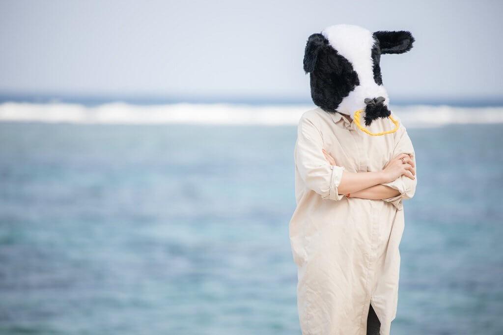 新年号の予想が気になって仕方がない牛