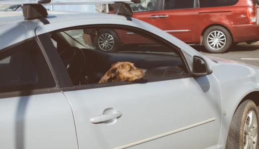 ガソスタ(ガソリンスタンド)洗車機の使い方や種類・特徴・注意点まとめ!ノンブラシタイプがおすすめ?